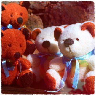 Plüschtier Teddybär Schafwolle